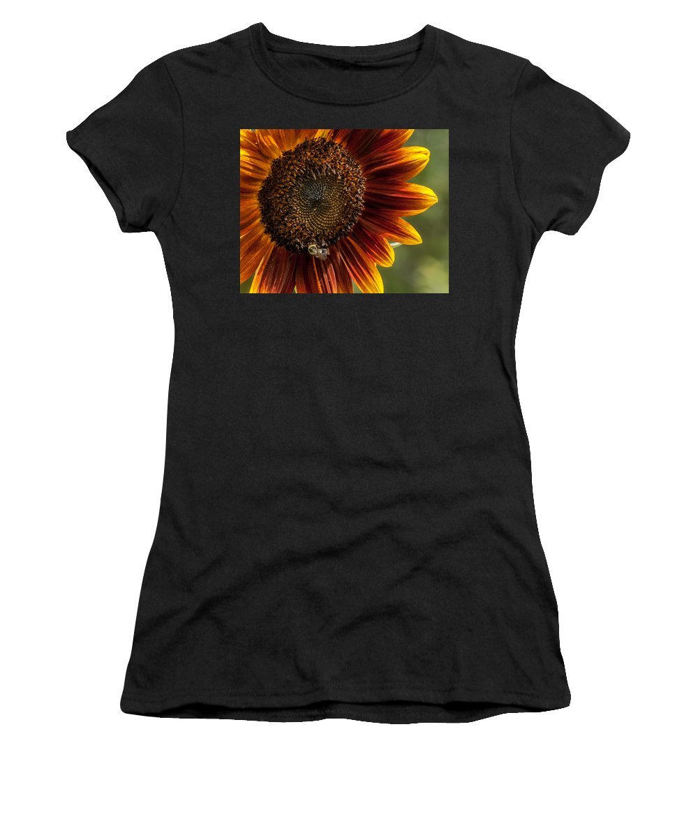 Agriculture Women's T-Shirt (Athletic Fit) featuring the photograph Colorful Summer by Sharon Meyer