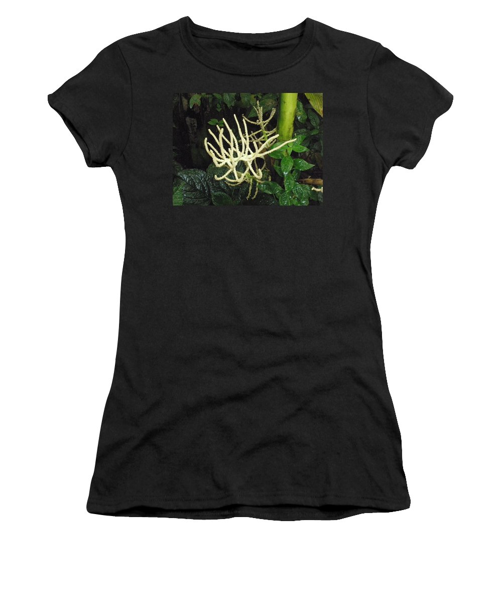 Flower Women's T-Shirt (Athletic Fit) featuring the photograph White Palm Flower In Costa Rica by Glenn Aker