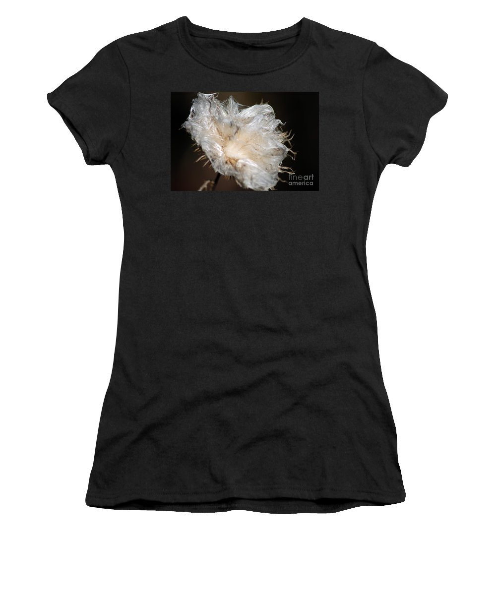 Cotton Plant Women's T-Shirt (Athletic Fit) featuring the photograph Cotton Plant by Optical Playground By MP Ray