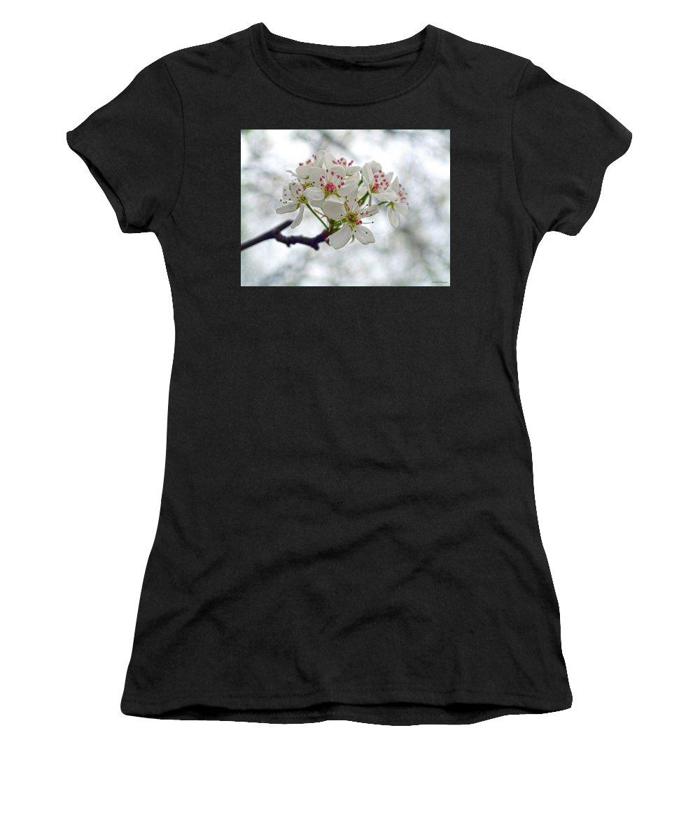 Tree Women's T-Shirt featuring the photograph Crab Apple by John Dauer