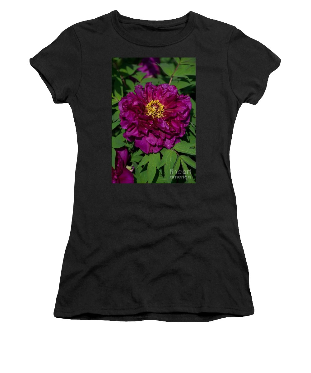 Bloom Women's T-Shirt (Athletic Fit) featuring the photograph Crinoline by Joseph Yarbrough