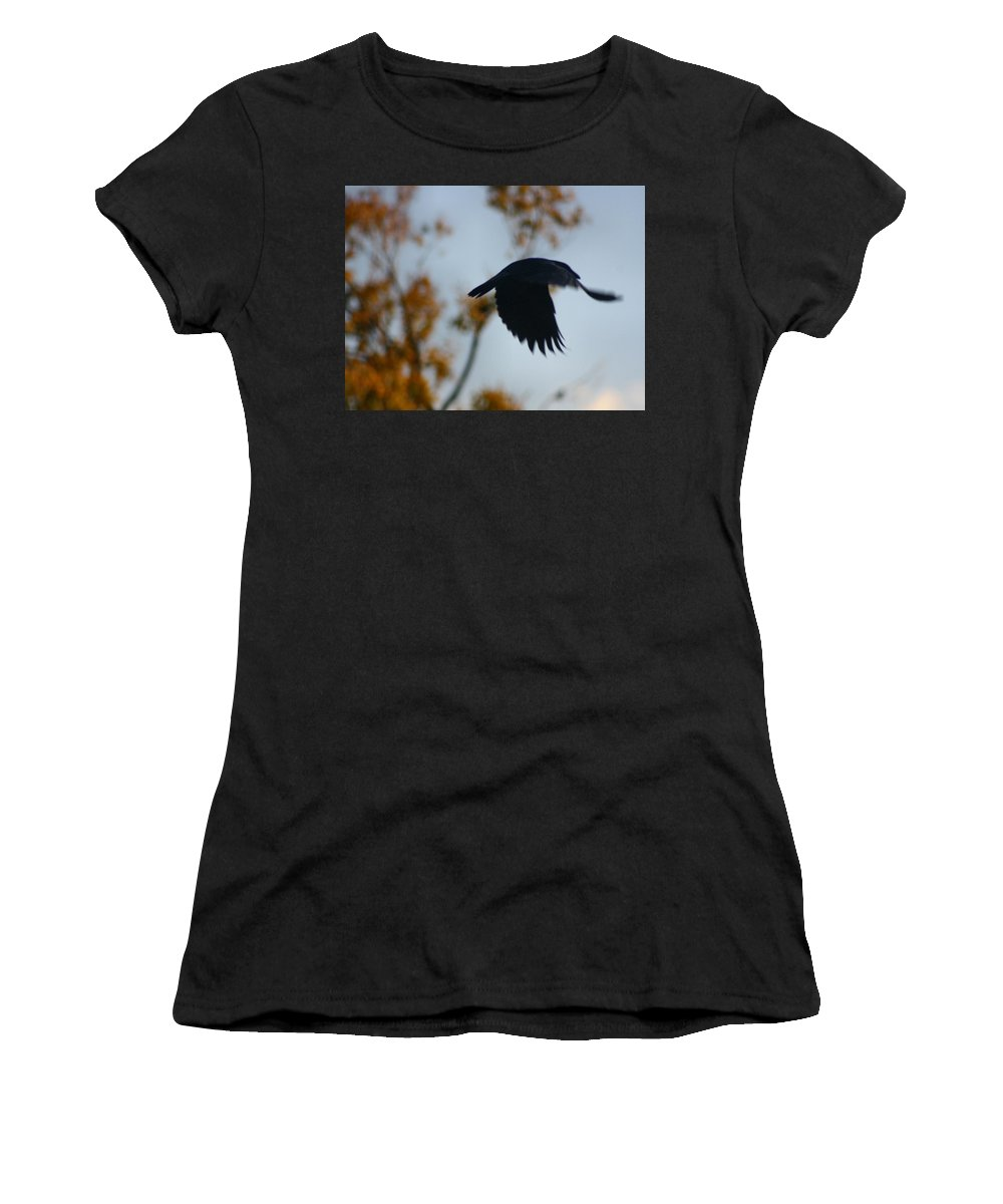 Blackbird Art Women's T-Shirt (Athletic Fit) featuring the photograph Crow In Flight 4 by Gothicrow Images