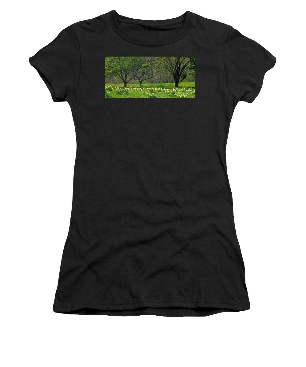 Spring Women's T-Shirt (Athletic Fit) featuring the photograph Daffodil Meadow by Ann Horn