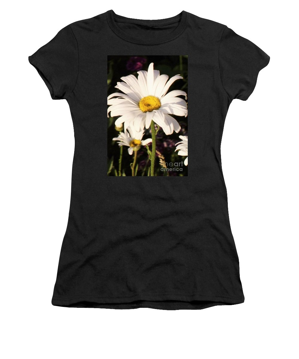 Daisy Women's T-Shirt (Athletic Fit) featuring the photograph Daisy Close Up by Brandi Maher