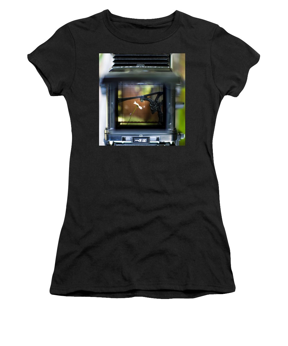 Daisy Women's T-Shirt featuring the photograph Daisy On A Bench Ttv by Aaron Aldrich