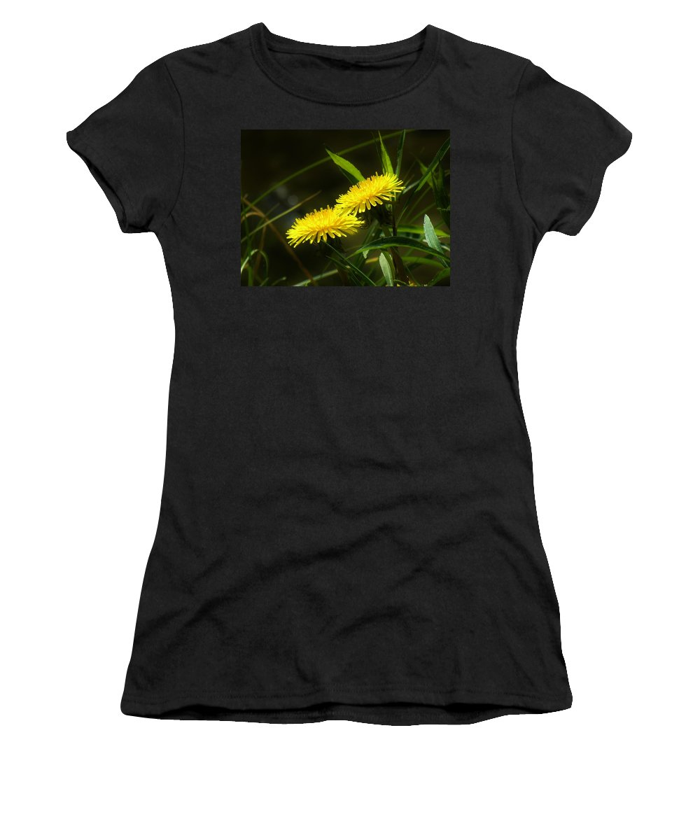 Dandelion Women's T-Shirt (Athletic Fit) featuring the photograph Dandelions by Sherman Perry