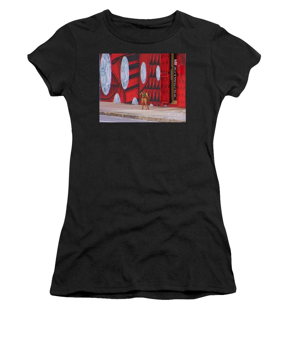 Dawg Women's T-Shirt featuring the photograph Dawg I Blend In by Chuck Hicks