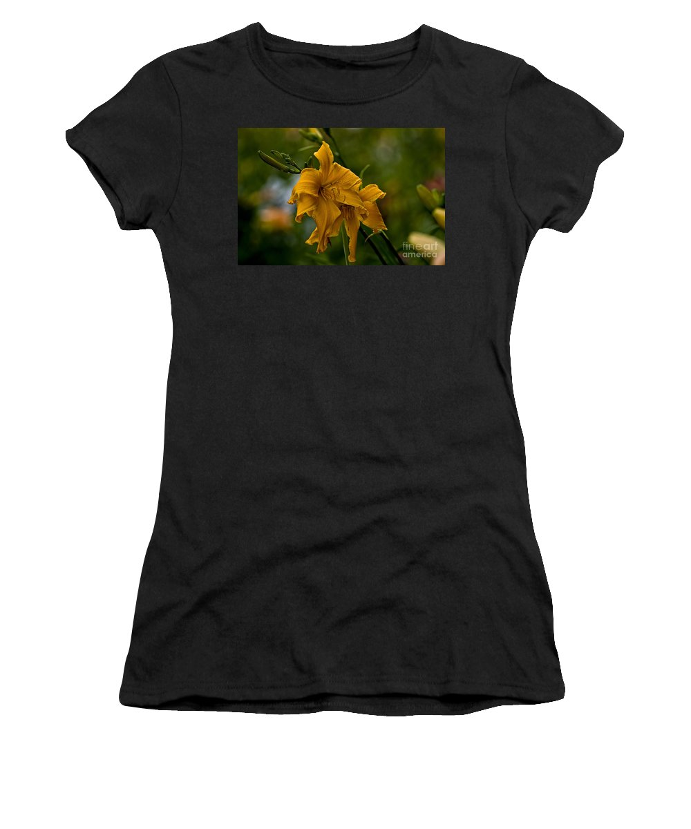 Daylily Women's T-Shirt featuring the photograph Daylily Picture 474 by World Wildlife Photography