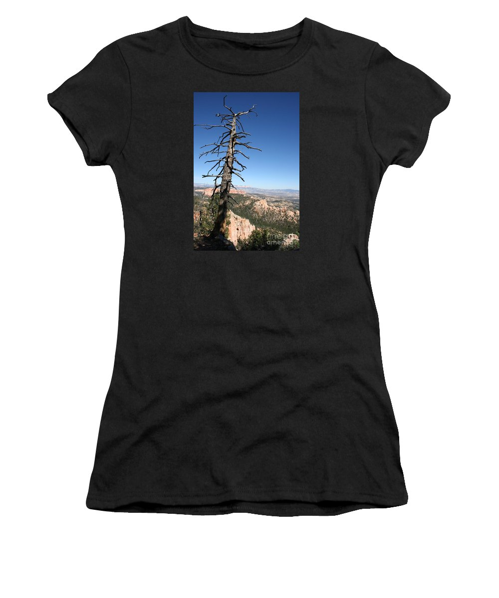 Tree Women's T-Shirt (Athletic Fit) featuring the photograph Dead Tree At Bryce Canyon Overlook by Christiane Schulze Art And Photography