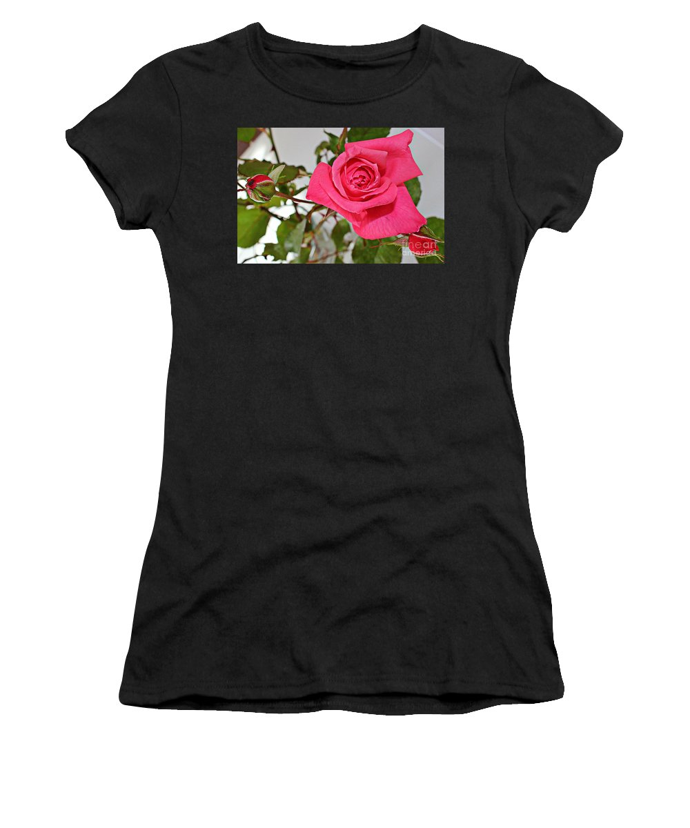 One Rose Women's T-Shirt (Athletic Fit) featuring the photograph Deep Pink Rose - Summer - Rosebuds by Barbara Griffin