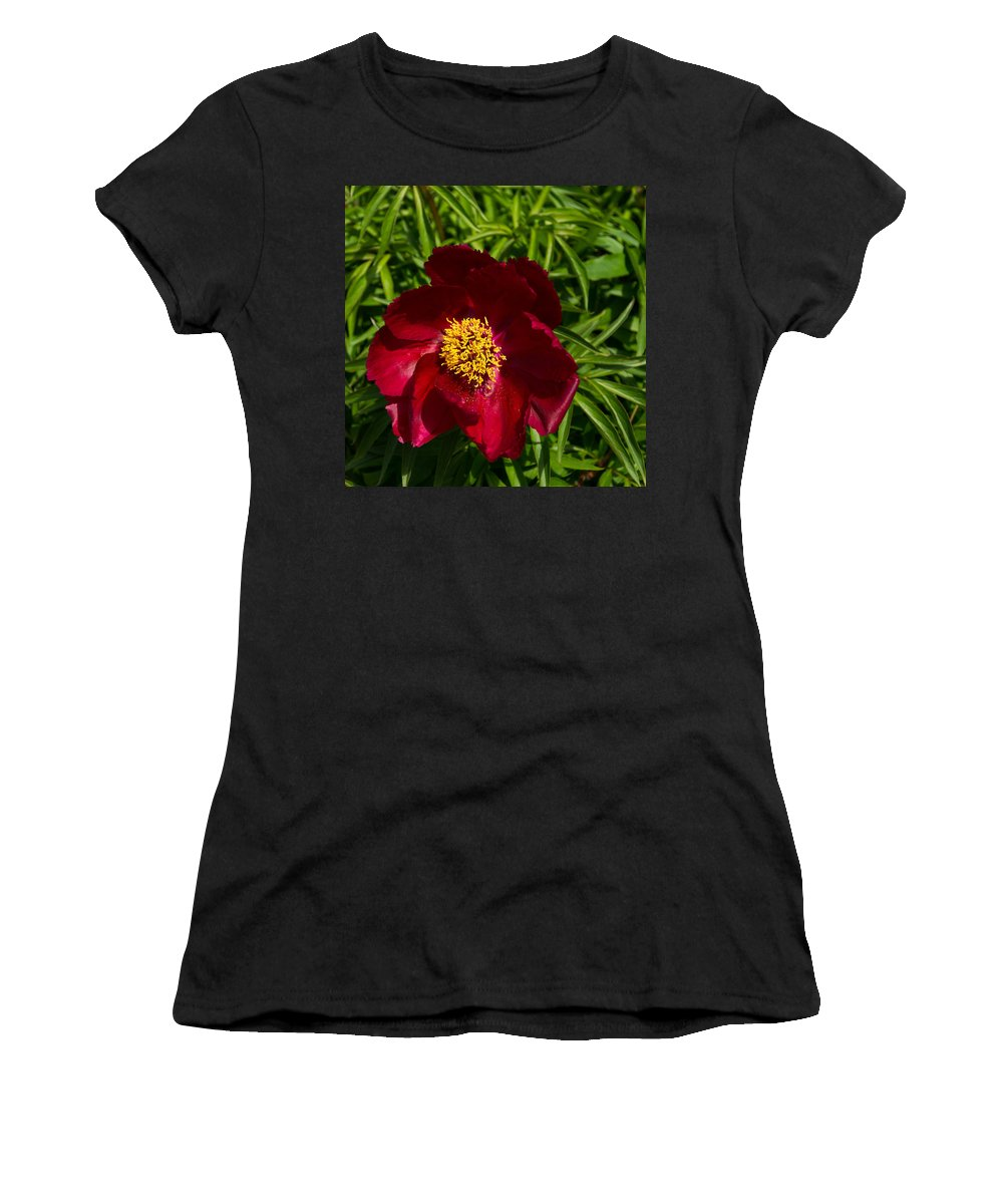 Peony Women's T-Shirt (Athletic Fit) featuring the photograph Deep Red Peony With Bright Yellow Stamens by Georgia Mizuleva