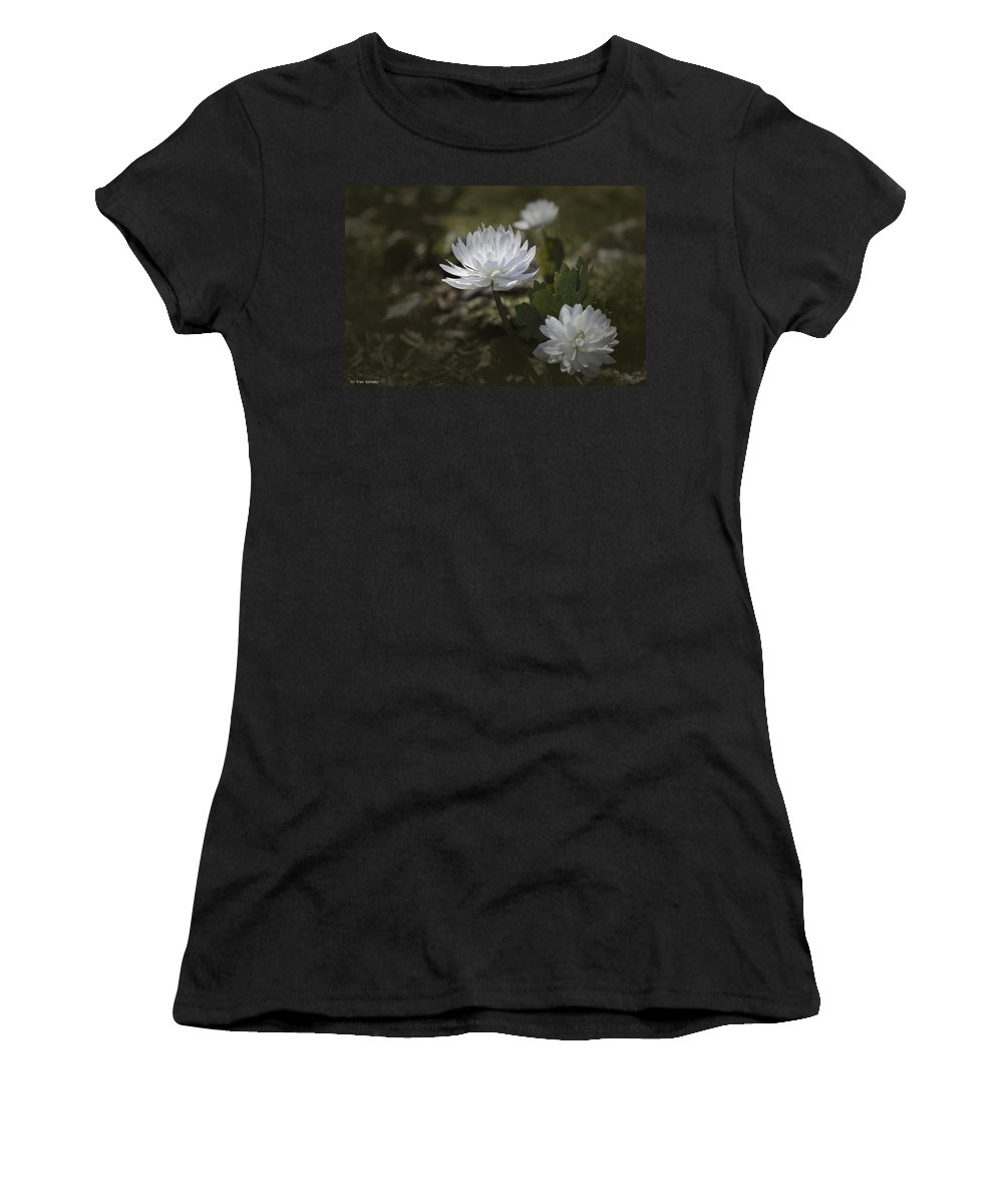 Flower Women's T-Shirt (Athletic Fit) featuring the photograph Double Bloodroot by Fran Gallogly
