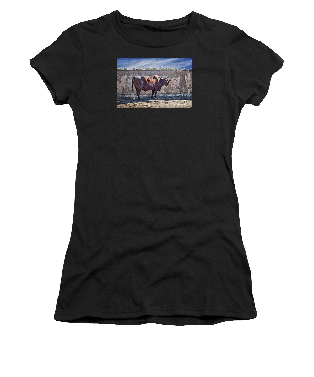 Eli Women's T-Shirt (Athletic Fit) featuring the photograph Eli by Nikolyn McDonald