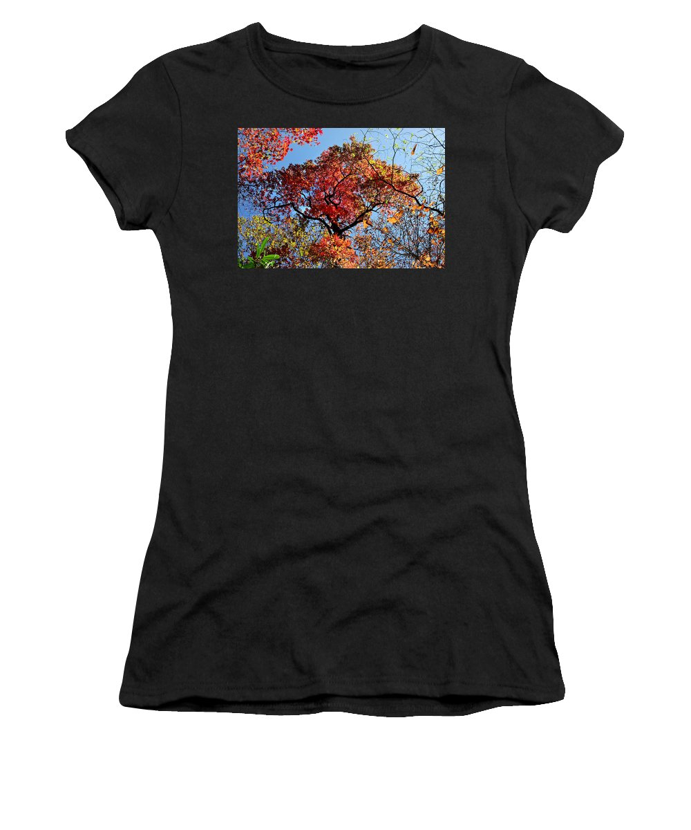 Duane Mccullough Women's T-Shirt featuring the photograph Fall Trees Of Wnc by Duane McCullough