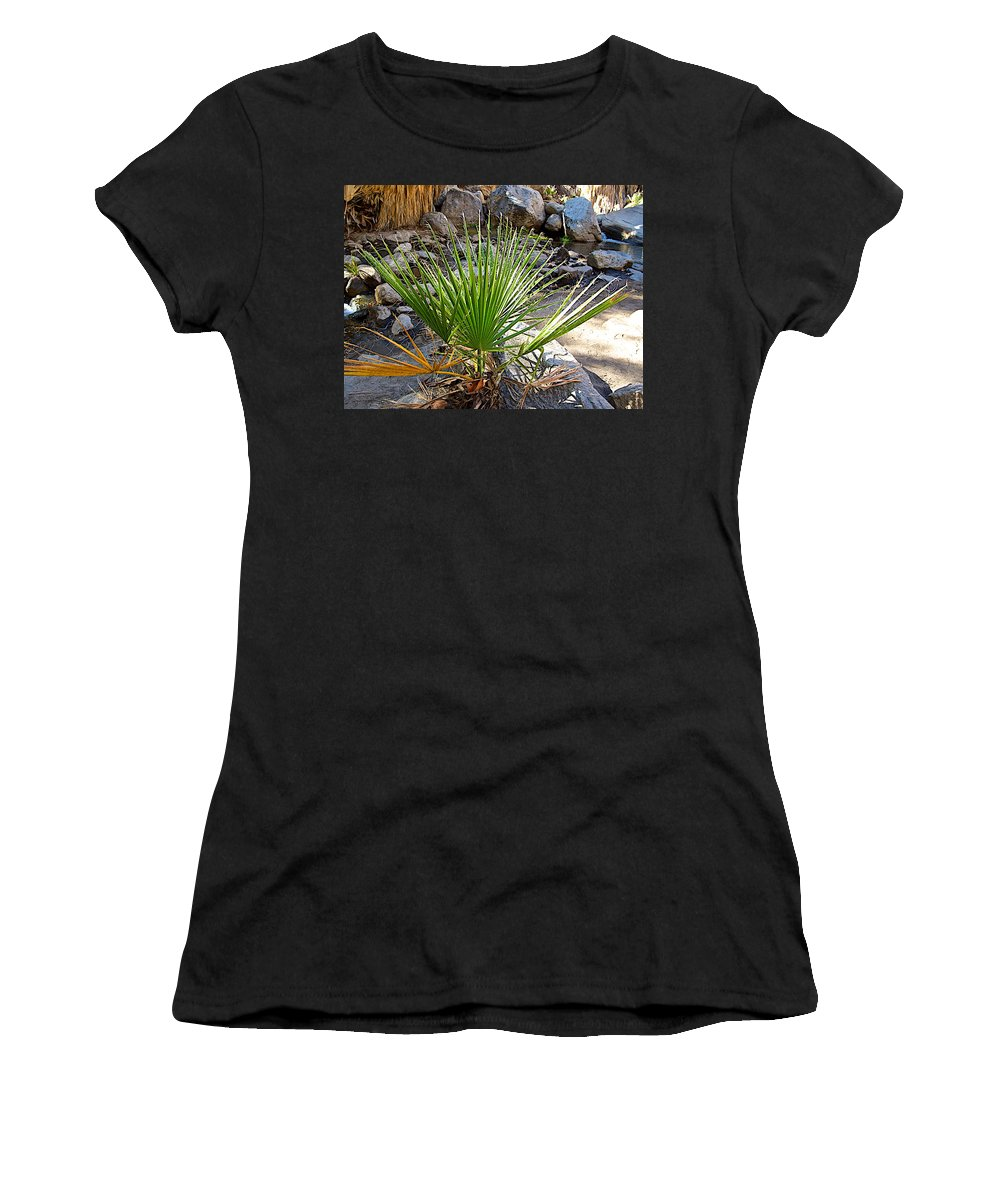 Fan Palm Leaf Over Andreas Creek In Andreas Canyon Trail In Indian Canyons Women's T-Shirt featuring the photograph Fan Palm Leaf Over Andreas Creek In Indian Canyons-ca by Ruth Hager