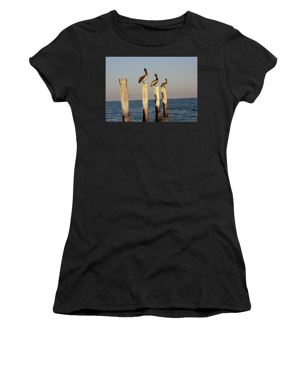 Florida Women's T-Shirt featuring the photograph Fashionably Late by Andrea Platt