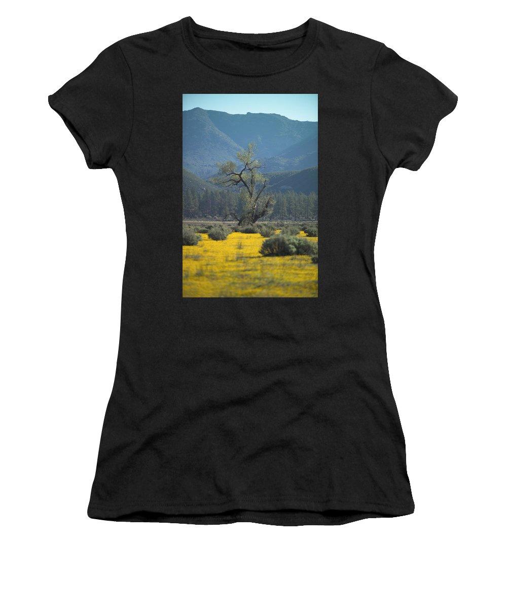 Yellow Flowers Women's T-Shirt featuring the photograph Fields Of Yellow Foxglove by Scott Campbell