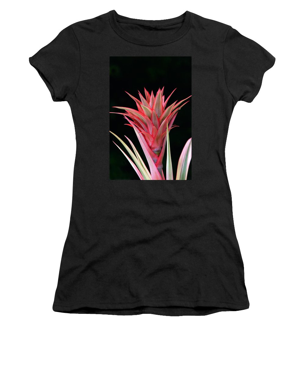 Floral Women's T-Shirt (Athletic Fit) featuring the photograph Floral Explosion by Byron Varvarigos