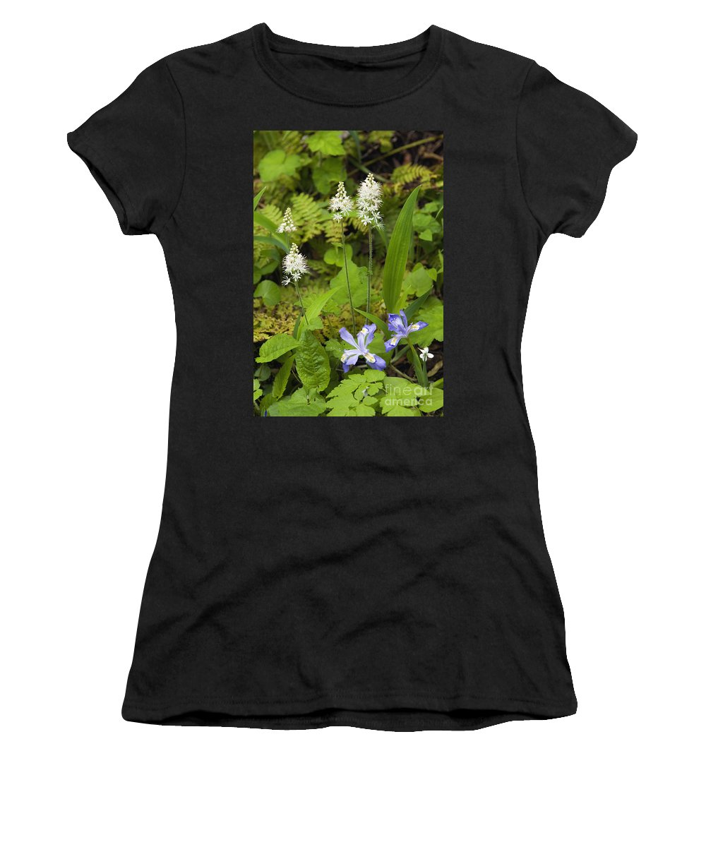 Tiarella Women's T-Shirt (Athletic Fit) featuring the photograph Foamflower And Crested Dwarf Iris - D008428 by Daniel Dempster