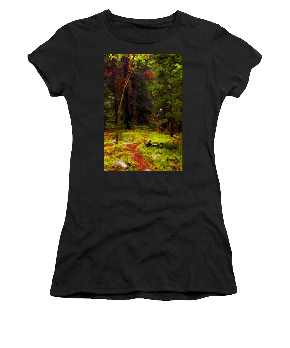 Forest Women's T-Shirt featuring the photograph Follow The Trail by David Sanchez