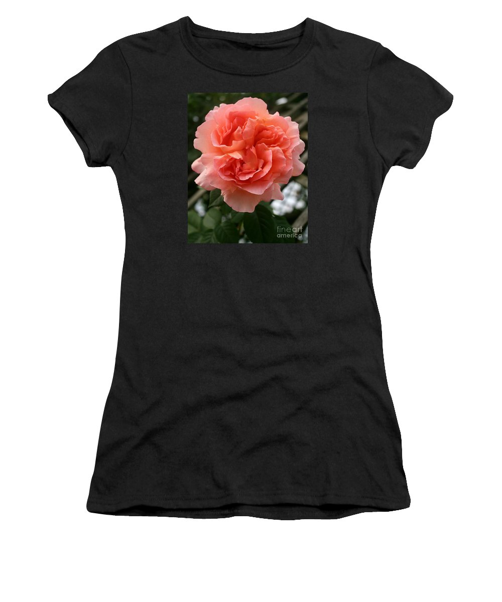Rose Women's T-Shirt featuring the photograph Formidable Bloom by Christiane Schulze Art And Photography