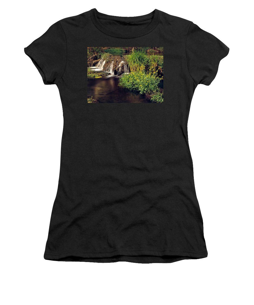 Arizona Women's T-Shirt (Athletic Fit) featuring the photograph Fossil Creek by Leland D Howard