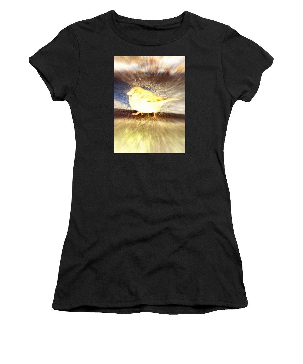Cow Women's T-Shirt featuring the photograph Like A Bird Or A Fragile Pedestrian by Hilde Widerberg