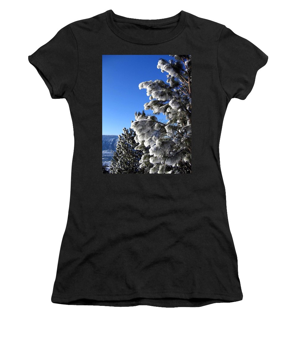 Frost Women's T-Shirt (Athletic Fit) featuring the photograph Frosty Limbs by Will Borden