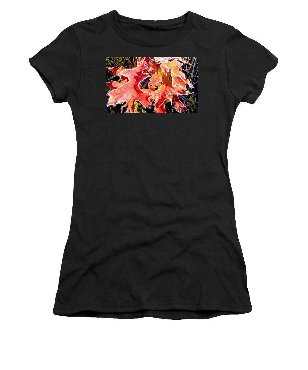 Plants Women's T-Shirt featuring the photograph Frosty Oak Leaves by Duane McCullough