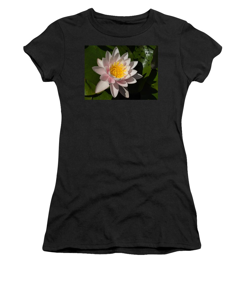 Water Lily Women's T-Shirt (Athletic Fit) featuring the photograph Gently Pink Waterlily In The Hot Mediterranean Sun by Georgia Mizuleva