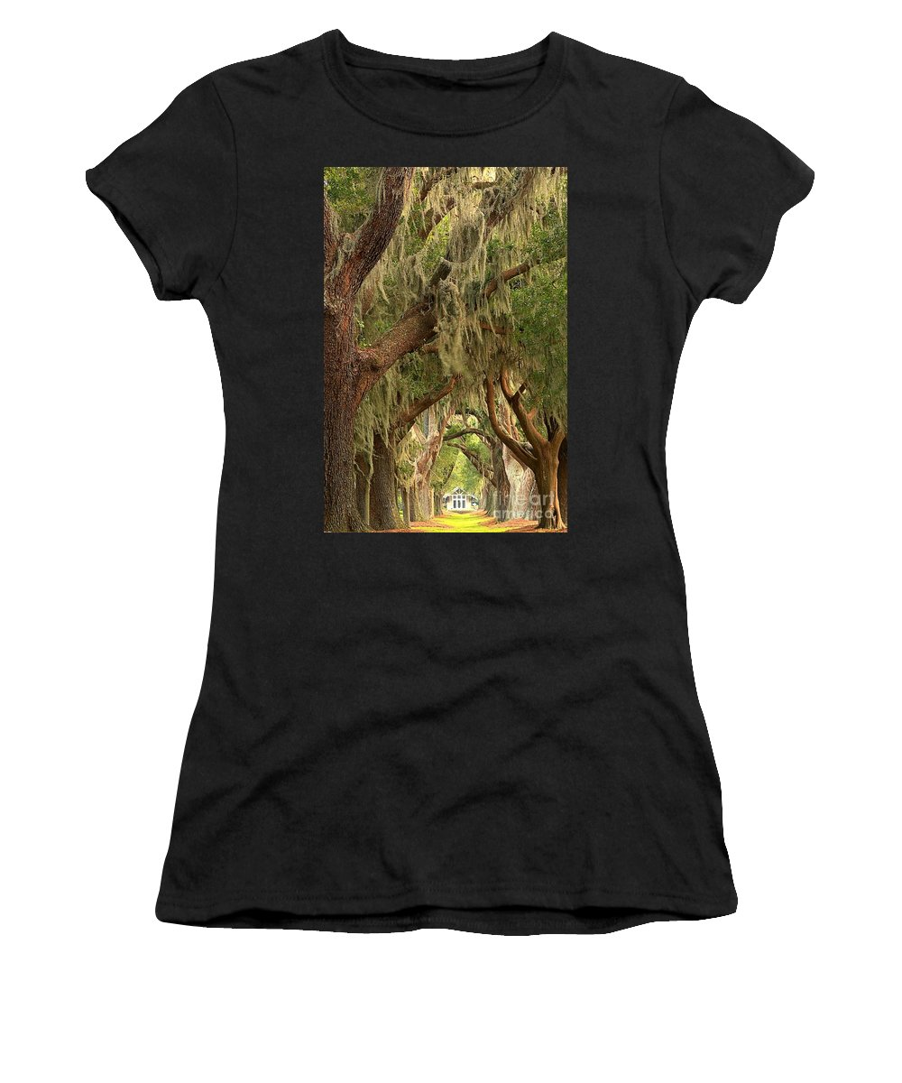 Avenue Of The Oaks Women's T-Shirt featuring the photograph Georgia Golden Oaks by Adam Jewell