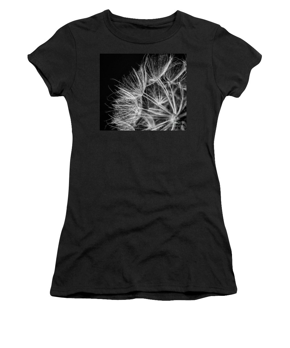 Monotone Women's T-Shirt (Athletic Fit) featuring the photograph Goatsbeard Seeds by Claudia Kuhn