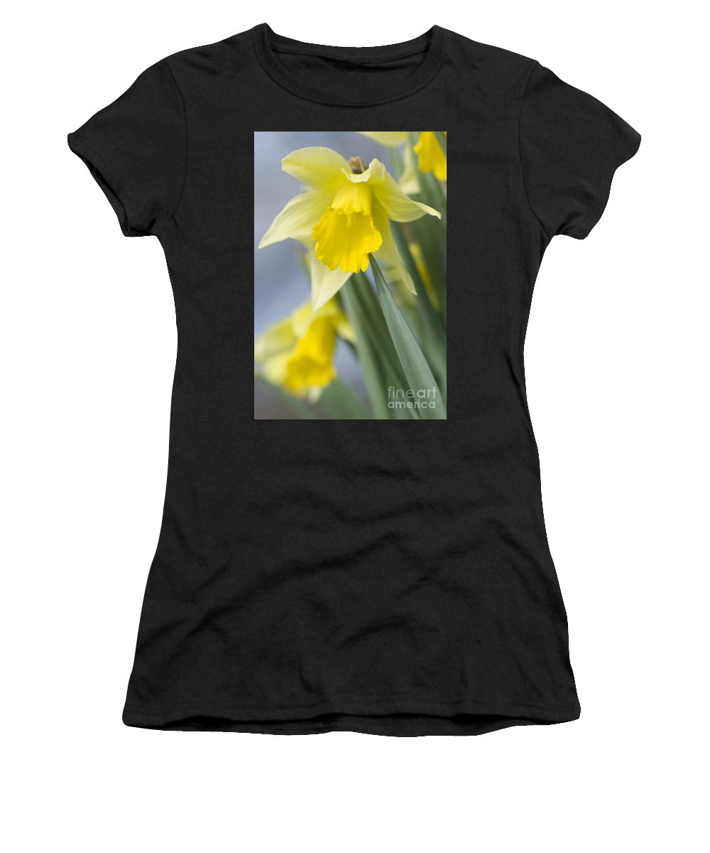 Annegilbert Women's T-Shirt (Athletic Fit) featuring the photograph Golden Daffodils by Anne Gilbert