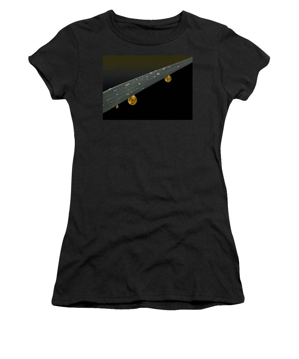 Grass Women's T-Shirt (Athletic Fit) featuring the photograph Golden Dew by Angela Stanton