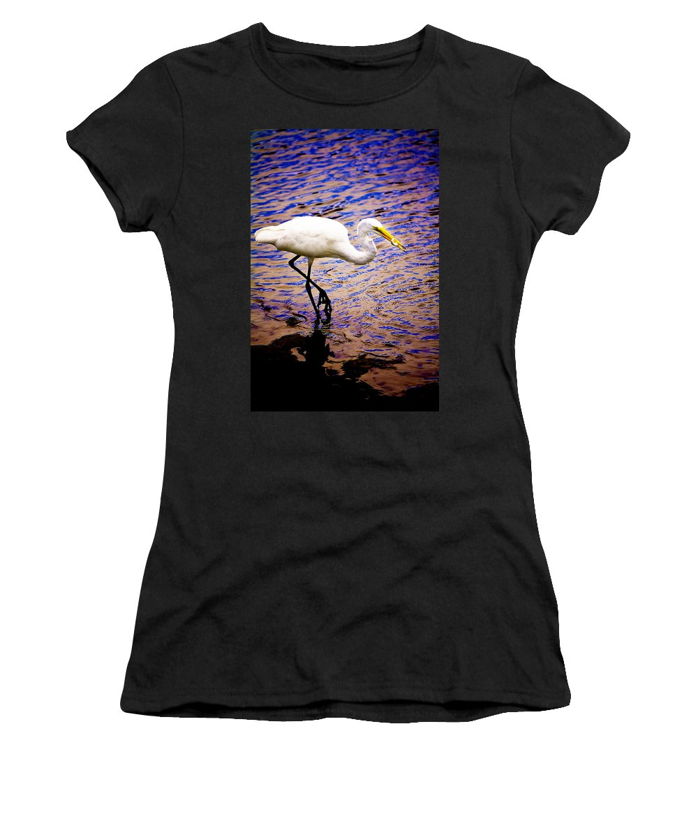 Great White Heron Women's T-Shirt (Athletic Fit) featuring the photograph Great White Heron by Gray Artus