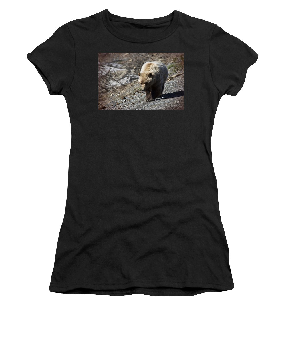 Grizzly Bear Women's T-Shirt featuring the photograph Grizzly By The Road by David Arment