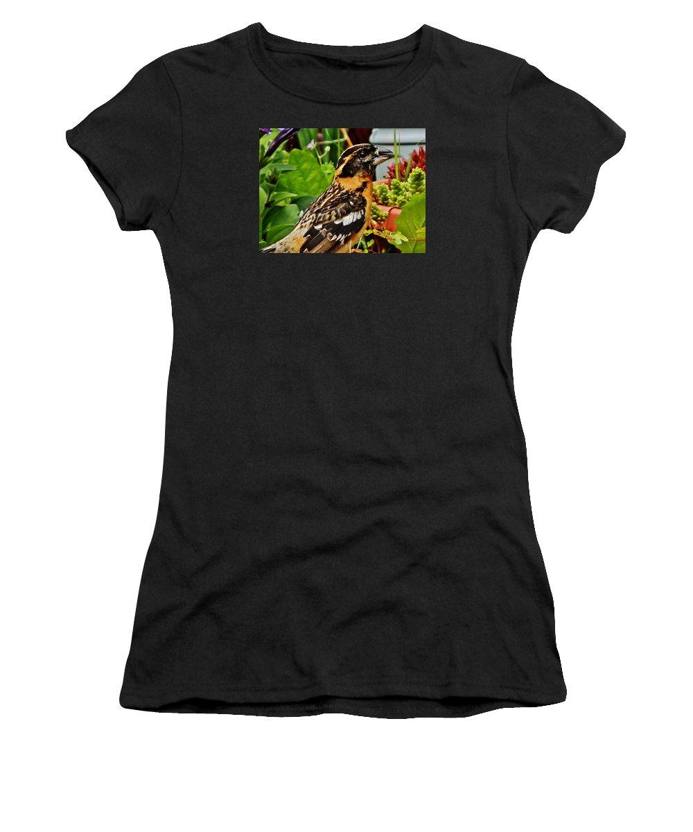 Bird Women's T-Shirt (Athletic Fit) featuring the photograph Grosbeak Profile by VLee Watson