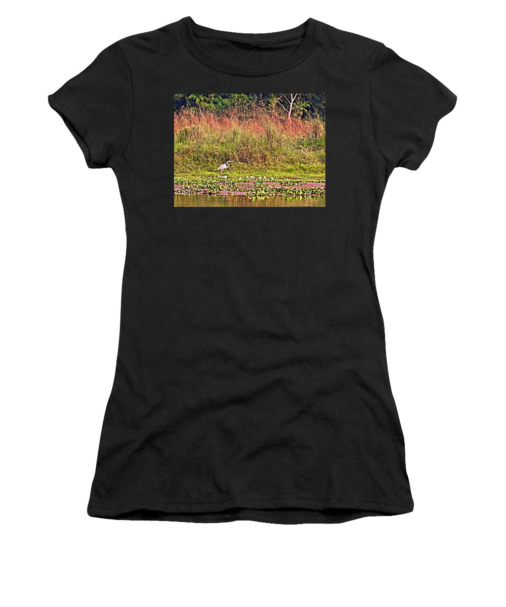 Heron On Shore Of Rapti River In Chitwan National Park In Nepal Women's T-Shirt featuring the photograph Heron On Shore Of Rapti River In Chitwan Np-nepal by Ruth Hager