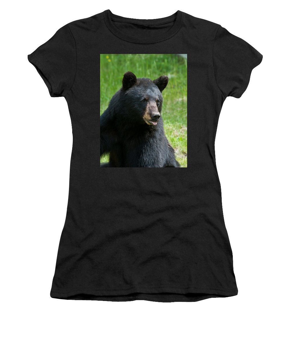Bears Women's T-Shirt featuring the photograph Hot Day In Bear Country by Brenda Jacobs