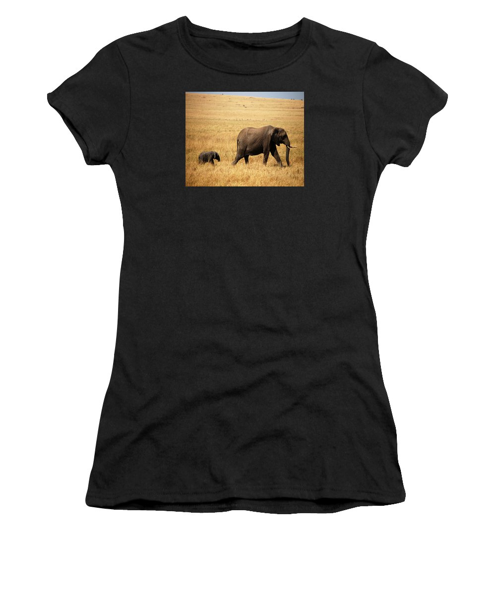 Animal Women's T-Shirt featuring the photograph Huge Expectaions by Pamela Peters