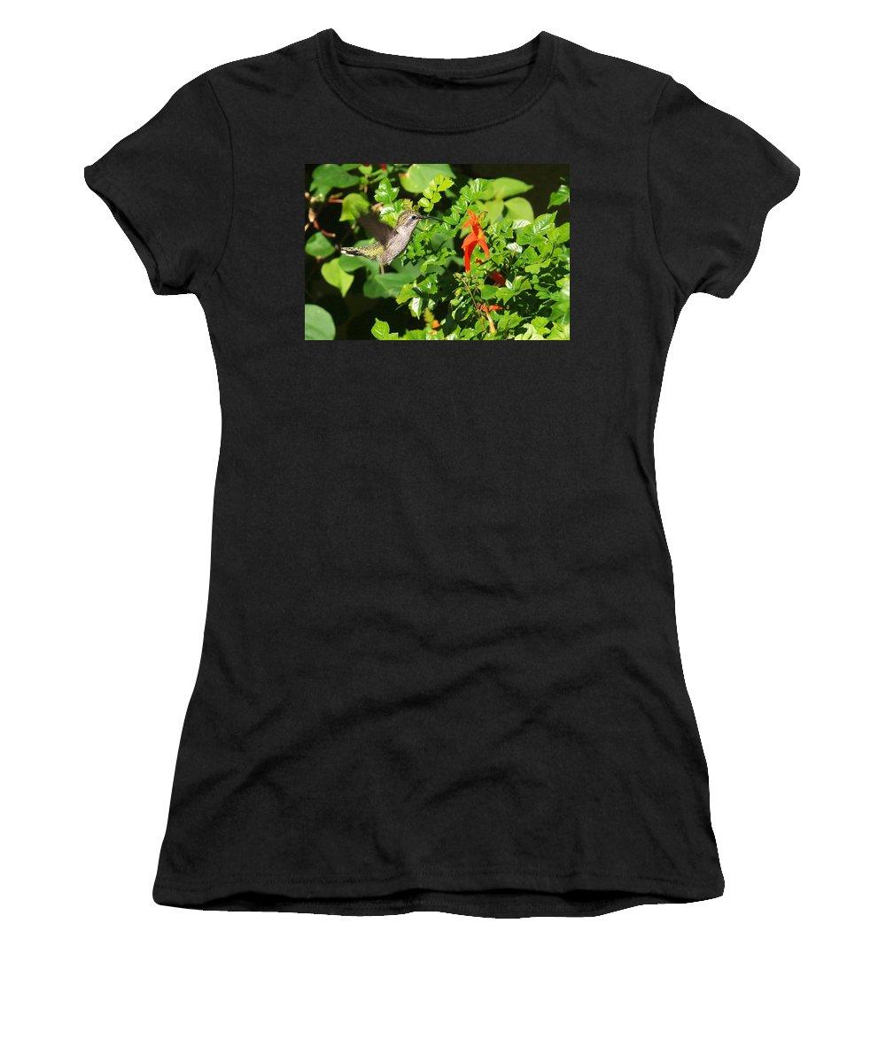 Humming Bird Women's T-Shirt featuring the photograph Hummer by Steve Ondrus