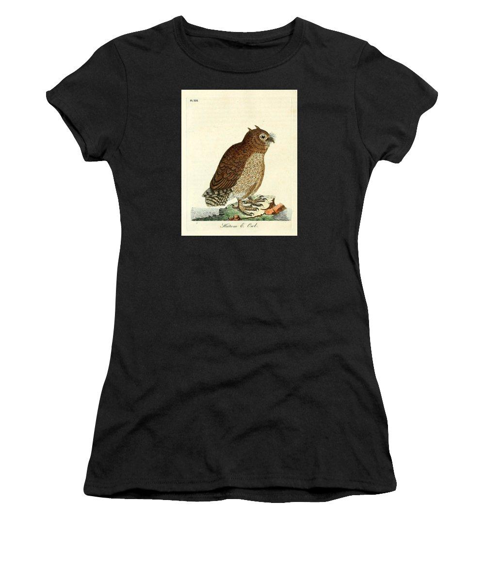Hutum Women's T-Shirt featuring the painting Hutum Owl by John Latham