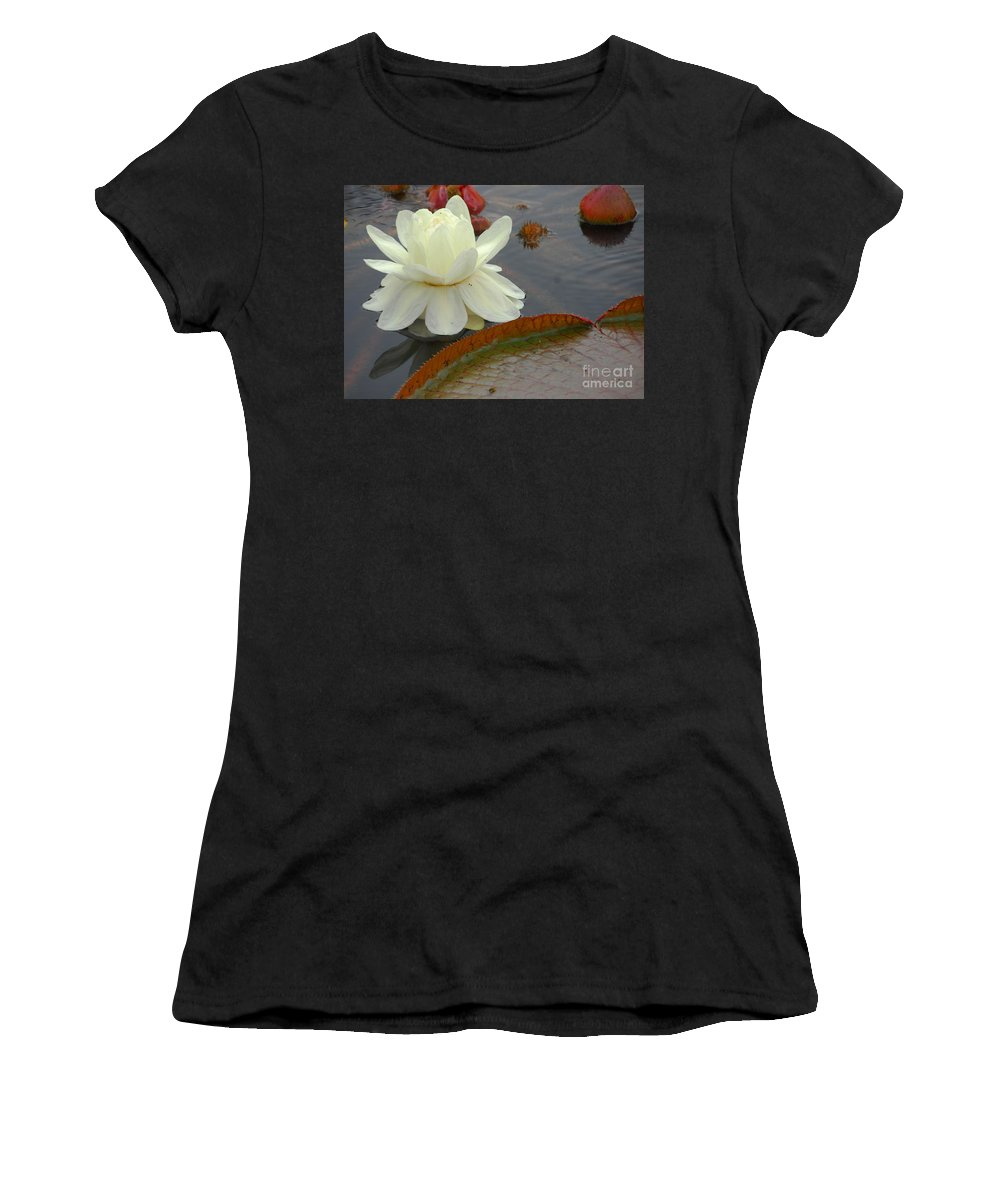 Flowers Women's T-Shirt (Athletic Fit) featuring the photograph Hybrid Water Platter Day One by Cindy Manero