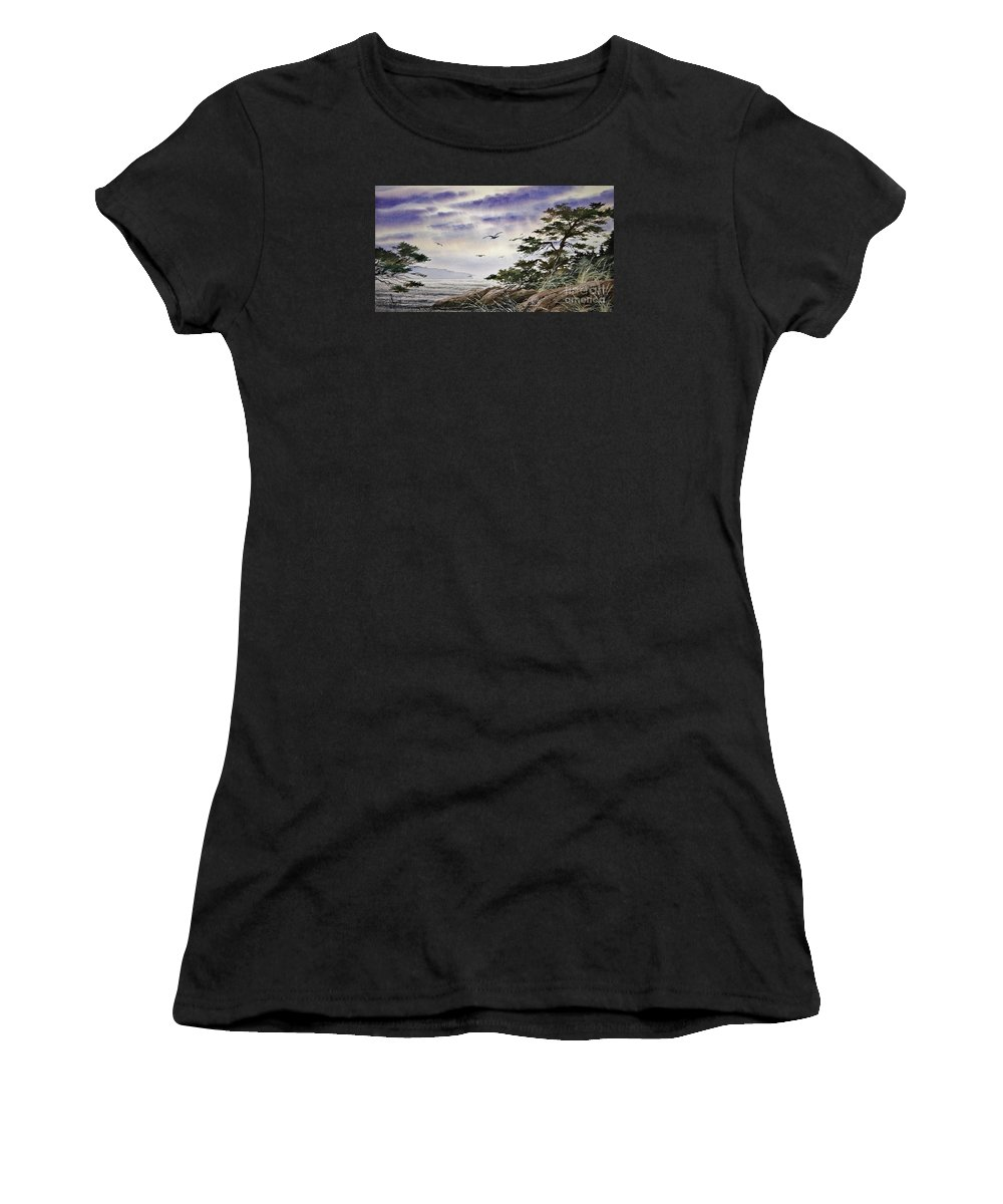 Landscape Fine Art Print Women's T-Shirt (Athletic Fit) featuring the painting Island Sunset by James Williamson