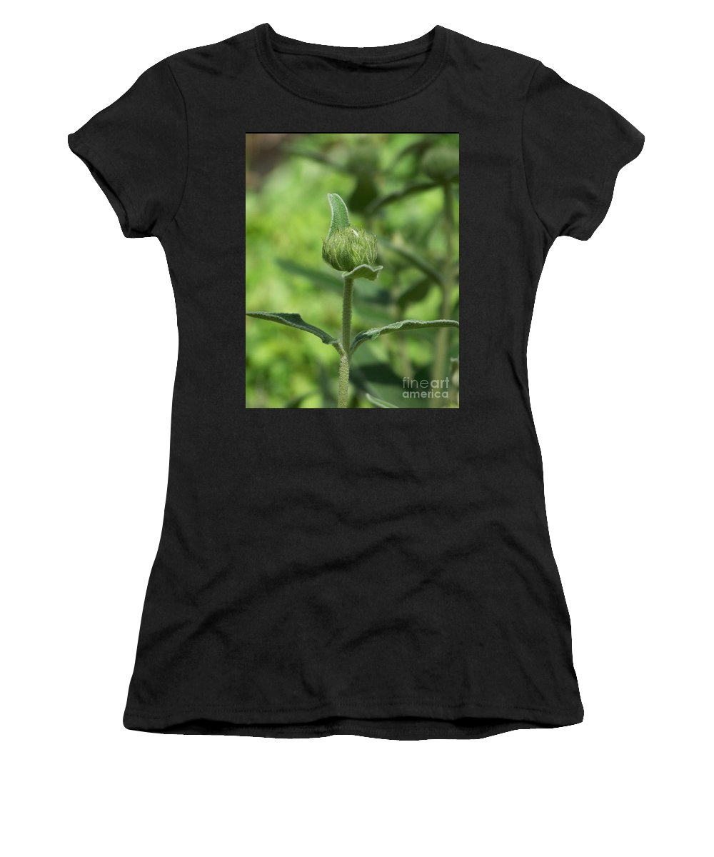 Plants Women's T-Shirt (Athletic Fit) featuring the photograph Its A Green World by Kathy McClure