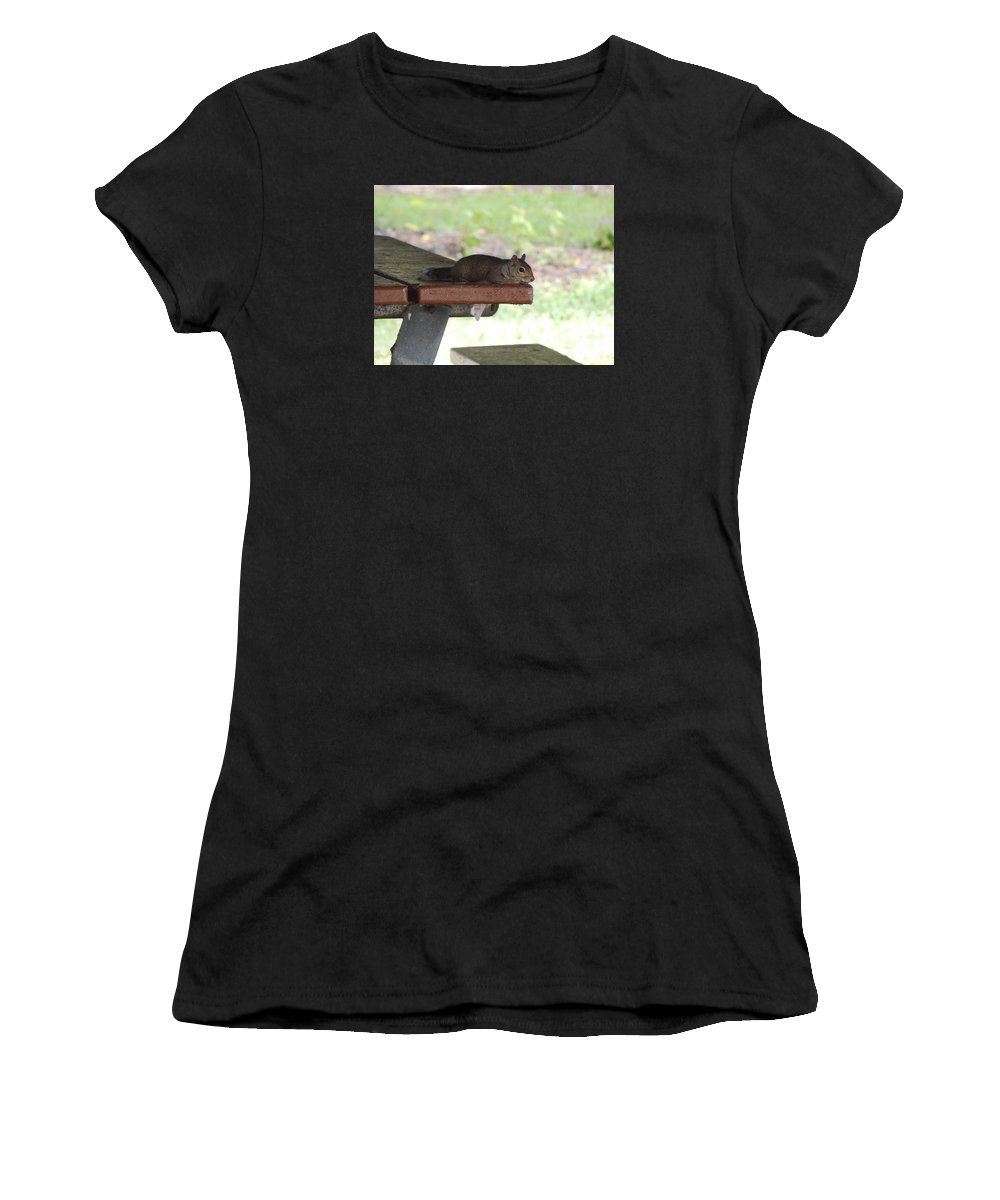 Florida Brown Squirrel. Squirrel At Rest. Park Table Women's T-Shirt featuring the photograph Just Five More Minutes by Terry Baker