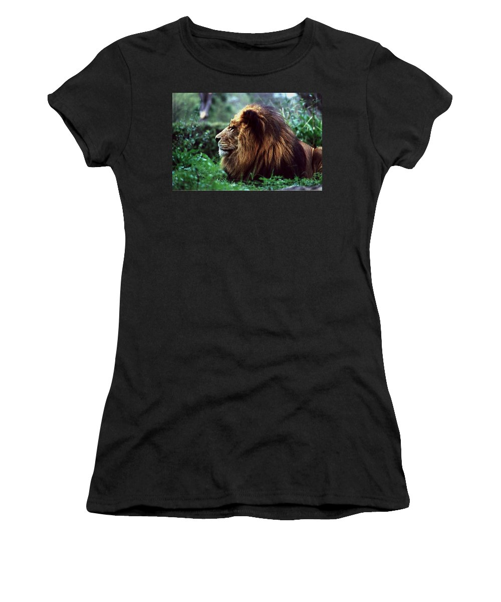 Animal Women's T-Shirt (Athletic Fit) featuring the photograph King Of Beasts by Glenn Aker