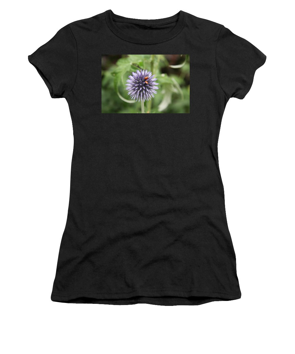 Flower Women's T-Shirt (Athletic Fit) featuring the photograph Ladybugs by Christiane Schulze Art And Photography