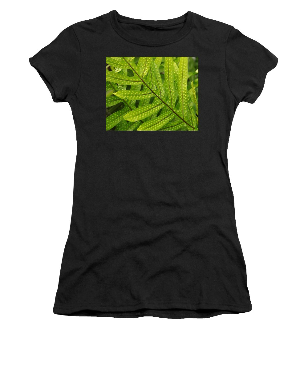 Leaf Women's T-Shirt (Athletic Fit) featuring the photograph Leaf by Belinda Greb