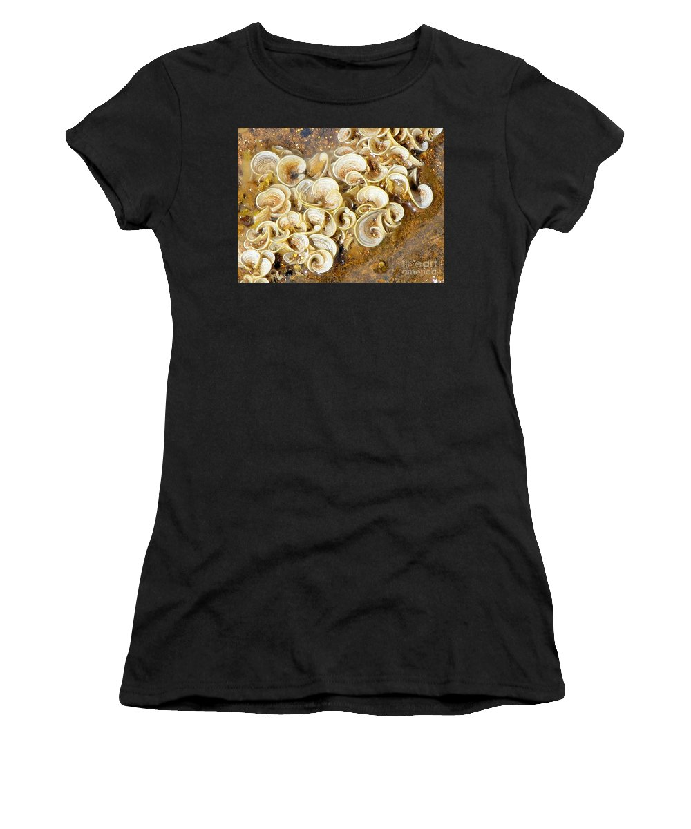 Sea Life Women's T-Shirt (Athletic Fit) featuring the photograph Life On The Rocks by Mary Deal